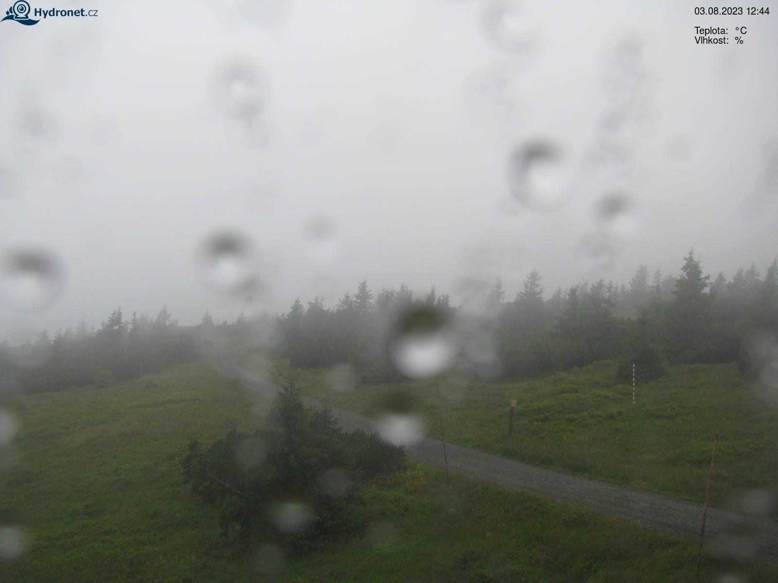 Kamera na żywo - Złote wzgórze